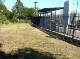 Wentworth Park light rail 2006