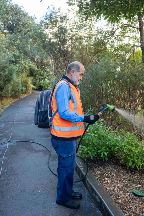 Watering to save our natives